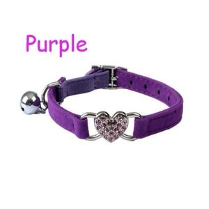 Collar for a cat or small dog